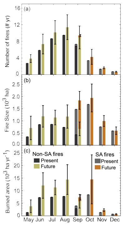 The response of SA and non-SA fires to climate change during the middle part of the 21st century for the RCP8.5 scenario.